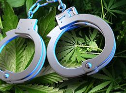 marijuana_defense_lawyer2